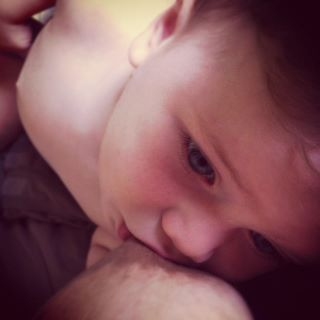 16month old Theo breastfeeding