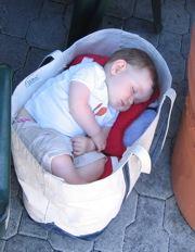 sleeping in LL Bean tote