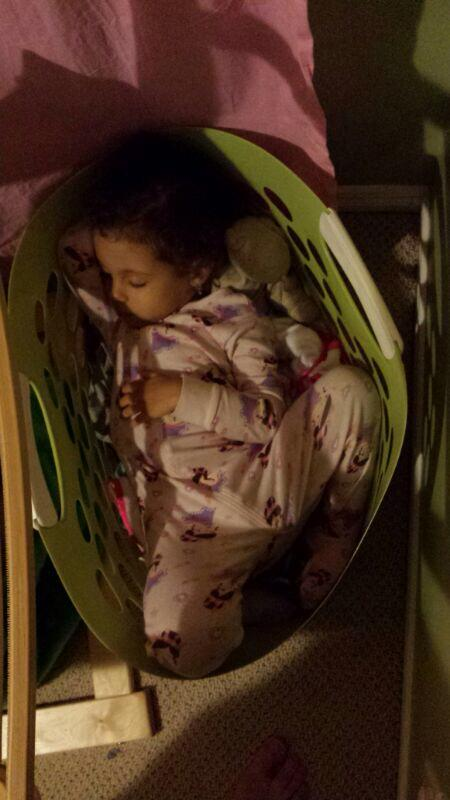 sleeping in green laundry basket