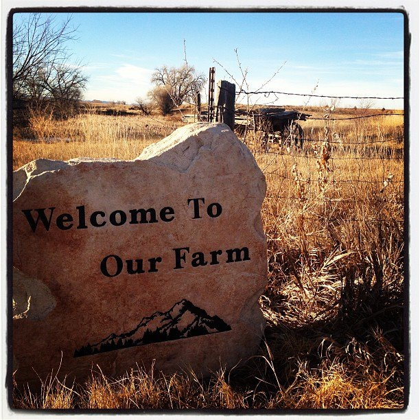 Welcome to Our Legacy Farm